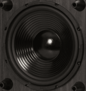 Acoustic Audio PSW-10 subwoofer cone and coil