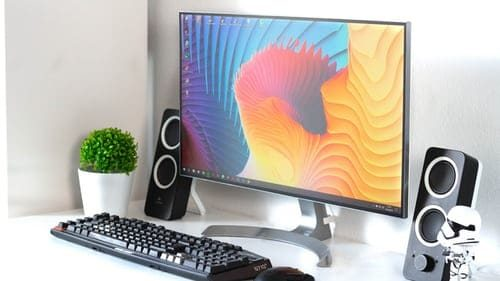 Flat screen monitor with speaker on the side