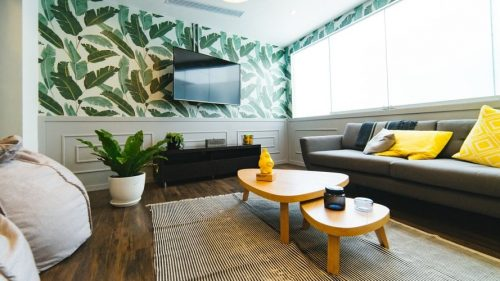 TV in a leaf background wall