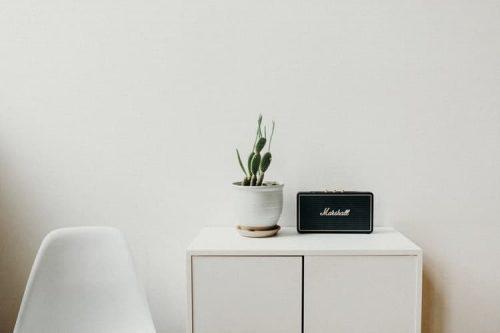 black speaker beside a potted plant