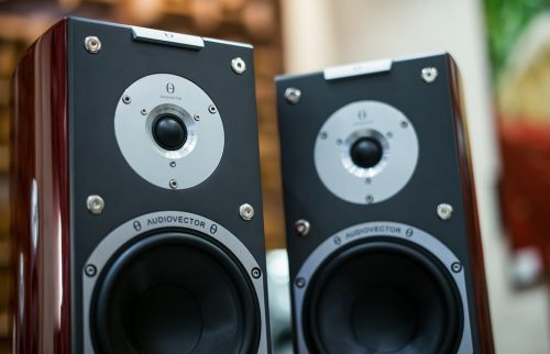 speakers with wood finish