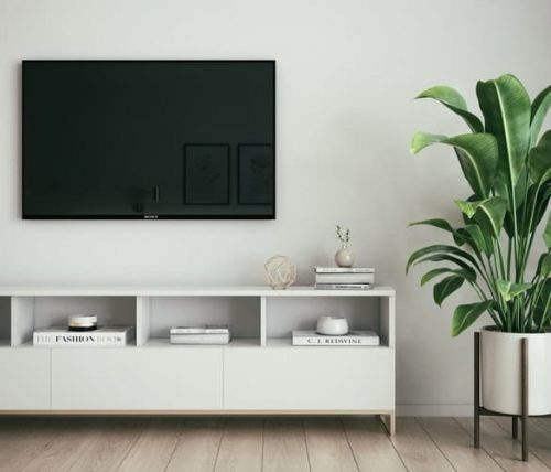 TV with a plant on the side